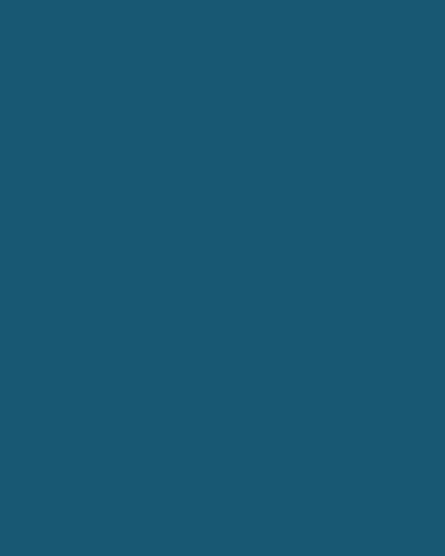 Geometric Lace Dress w/ Portrait Collar