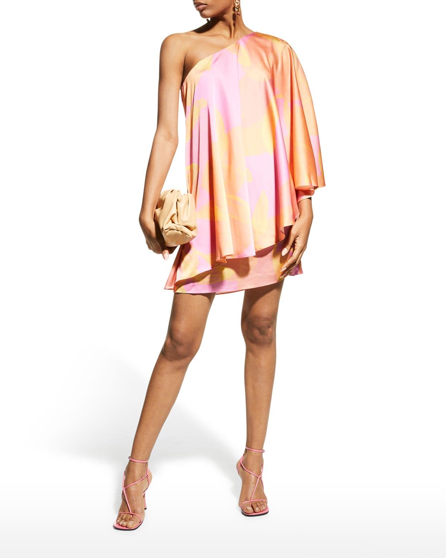 One-Shoulder Printed Overlay Dress